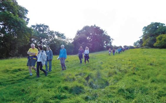 Barnt Green walkers