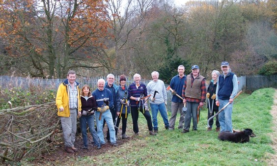 Volunteers with completed hedge