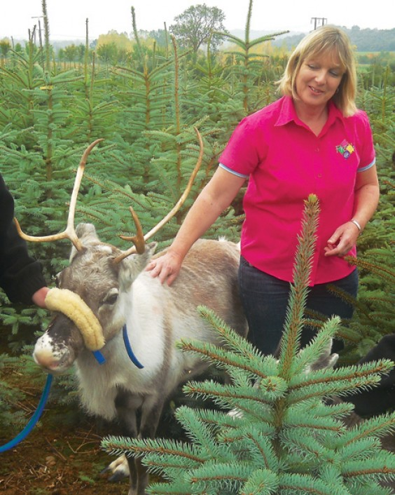Nicci Gow with Gertrude the reindeer
