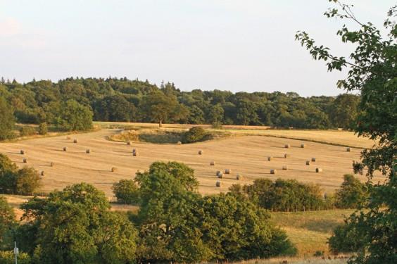 Newbourne Hill, Rowney Green