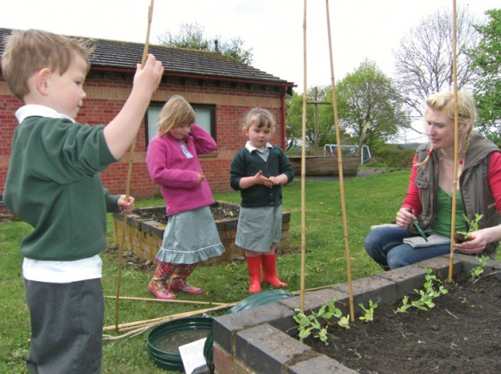 Children planting vegetables
