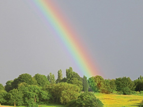 Rainbow, Rowney Green