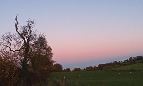 Sunset in Alvechurch