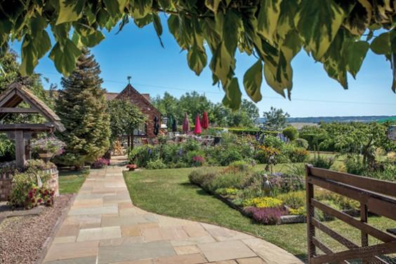Penny's garden