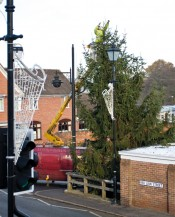 The Alvechurch Christmas tree is installed
