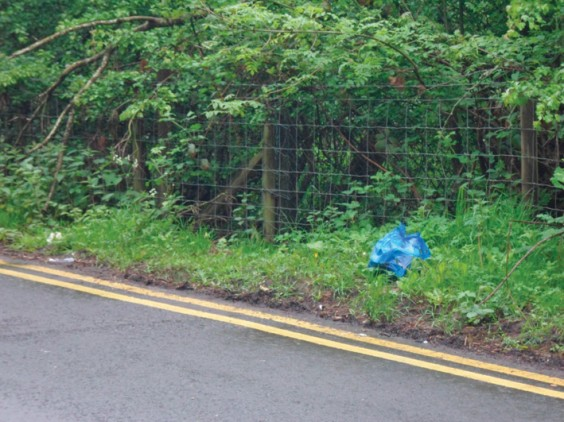 Litter on Bittell Road